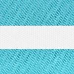 Turquoise Stripe R-011