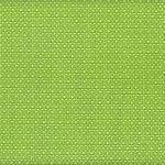 FX-465 Slingweave Key Lime